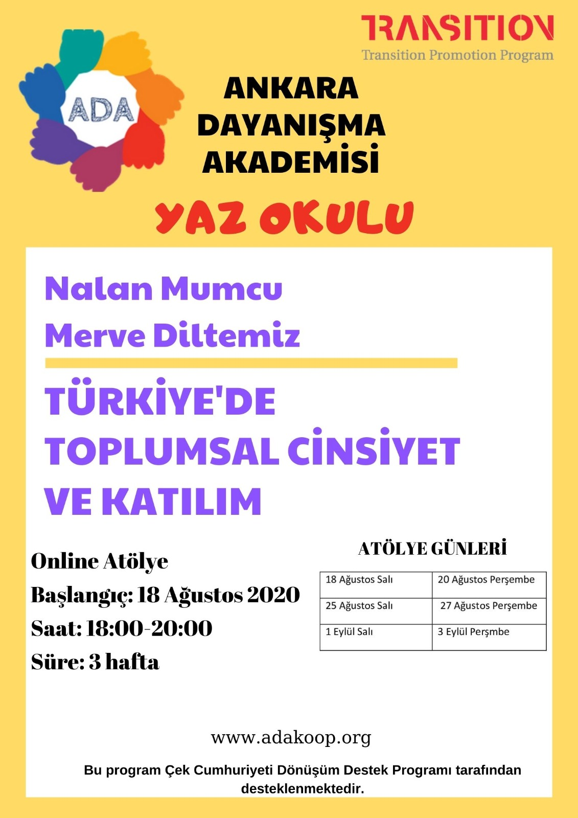 Türkiye'de Toplumsal Cinsiyet ve Katılım